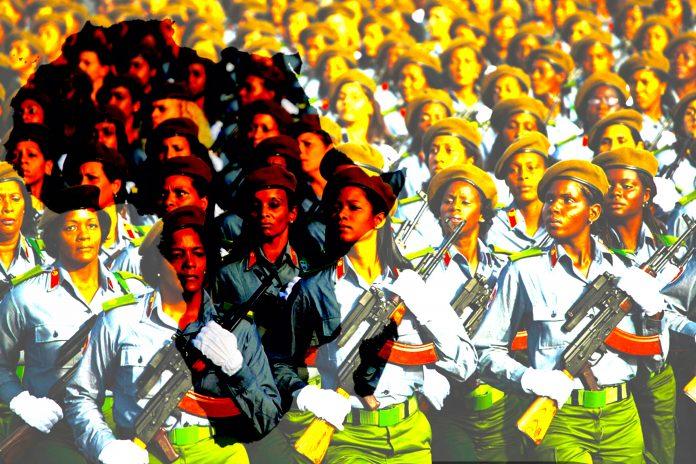 Une force internationale de la paix en Afrique
